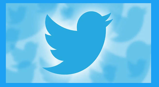 Twitter suspends fake accounts verified by mistake